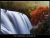 Coltelli-Stefano-Falls