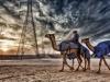 Alberghina Francesco (AFI) - Tracce nel Deserto