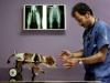 Bani Angelo (AFI) - Pronto Soccorso Veterinario n°6