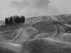 Landi Battista (AFI-EFIAP-BFI) - Terre di Toscana