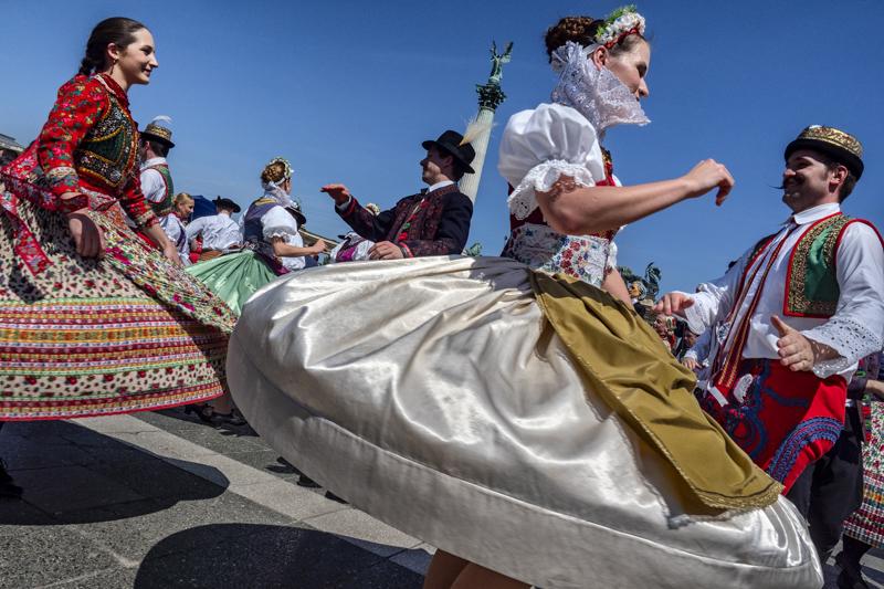 Festa-di-Primavera-1Campi-Maria-CristinaCasalecchio-di-RenoBO-C.F.-Petroniano