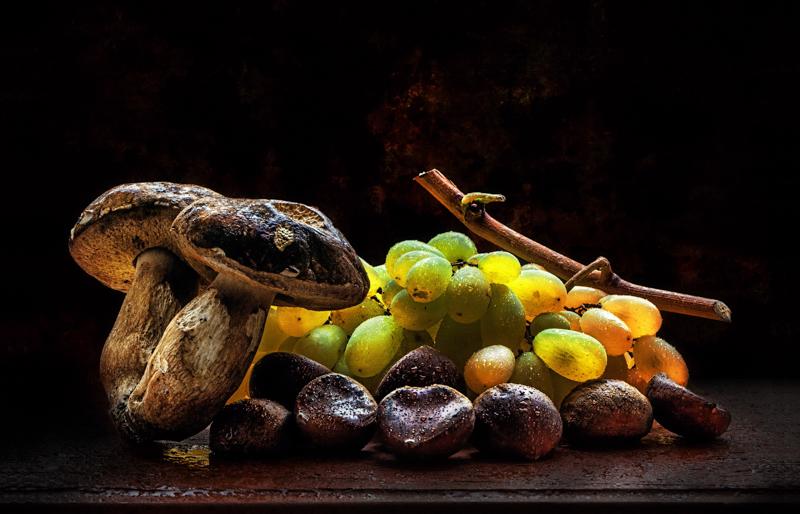 Sapori-di-autunnoBugli-Pietro-AFI-EFIAP_bLivornoLI-Fotoclub-Nove