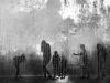 Aquatic-zombies-Ferretti-DanieleAnconaAN-CRUA-Scattoflessibile