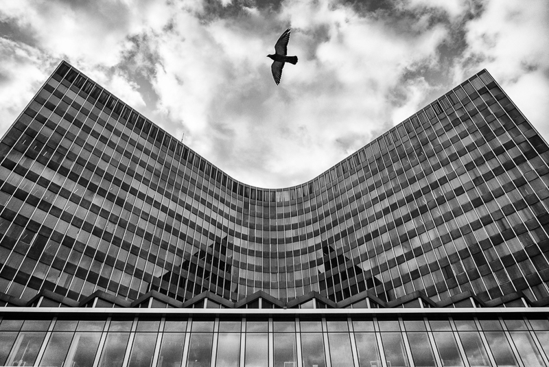 """Alderighi Massimo-""""wind""""-2019"""