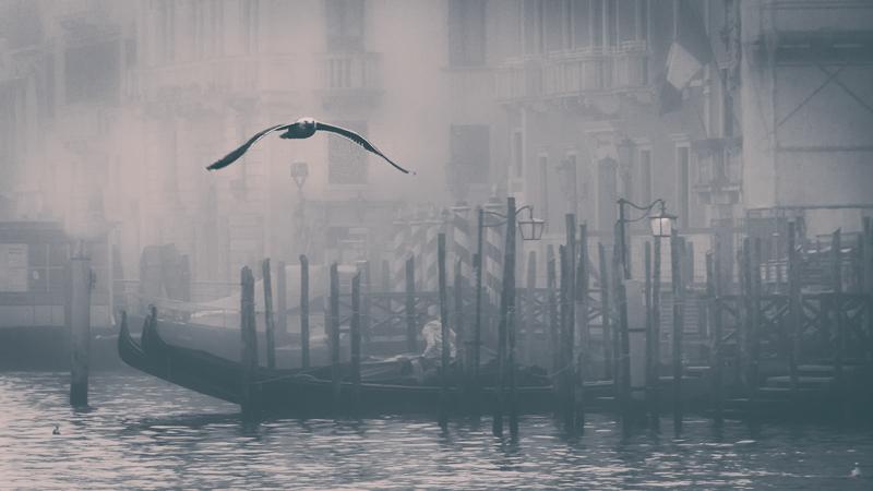 """Amarù Marco-""""Il volo""""-2019"""