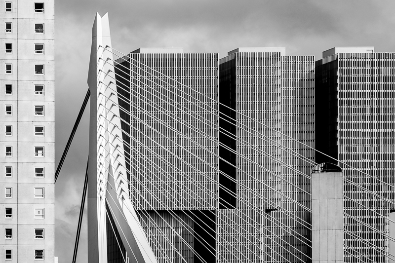 """D'Alia Valentina-""""Rotterdam""""-2020"""